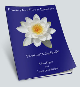 Prairie Deva Flower Essences