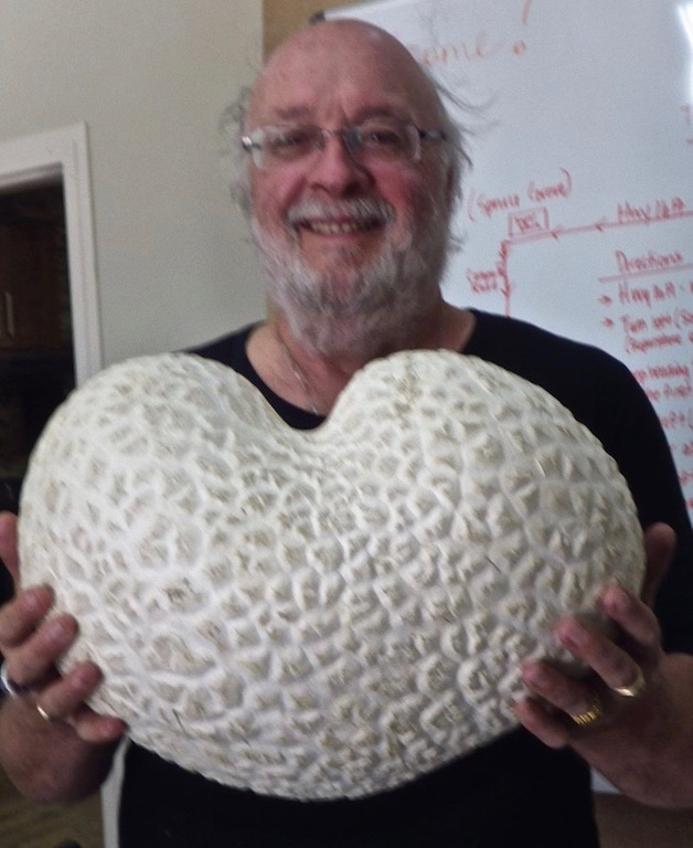 Robert & mushroom heart